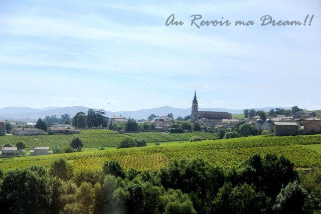 beaujolais vineyards, french vineyards, vineyard trip in France